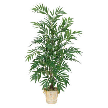 Picture of Bamboo 6' Potted Palm Tree