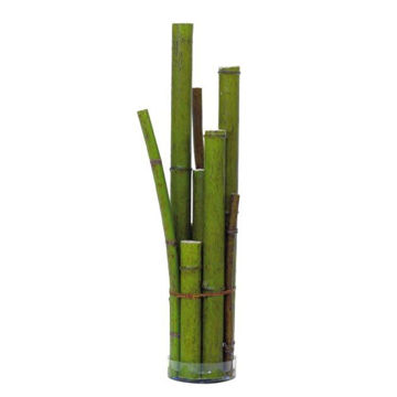 "Picture of 24"" Bamboo Mix in Glass"