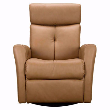 Picture of Prodigy II Swivel Glider