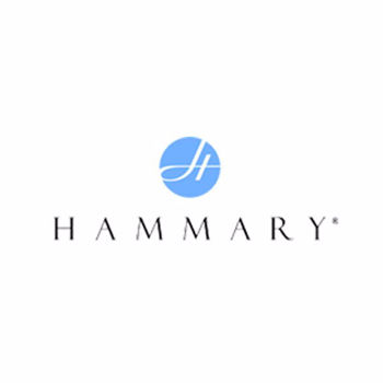 Picture for manufacturer Hammary Furniture