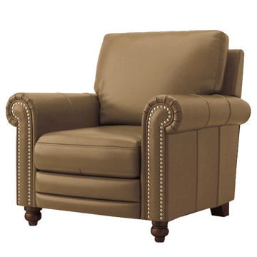 Picture of Jackson Power Recliner