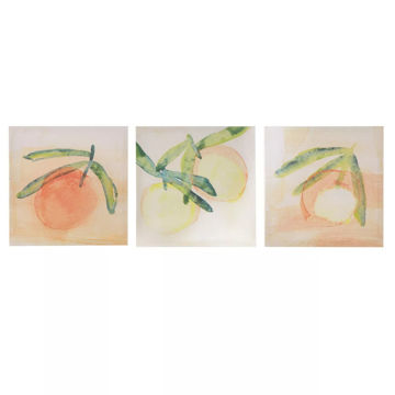 Picture of Orange Fruit 3 Piece Canvas Art