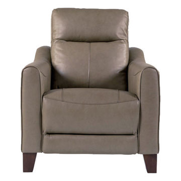 Picture of Forte Leather Power Recliner