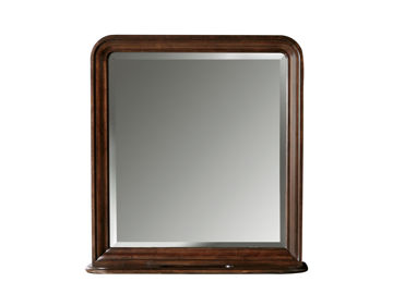 Picture of REPRISE STORAGE MIRROR