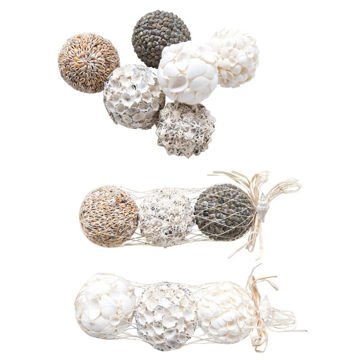 Picture of 4''ROUND SEASHELL ORBS S/3