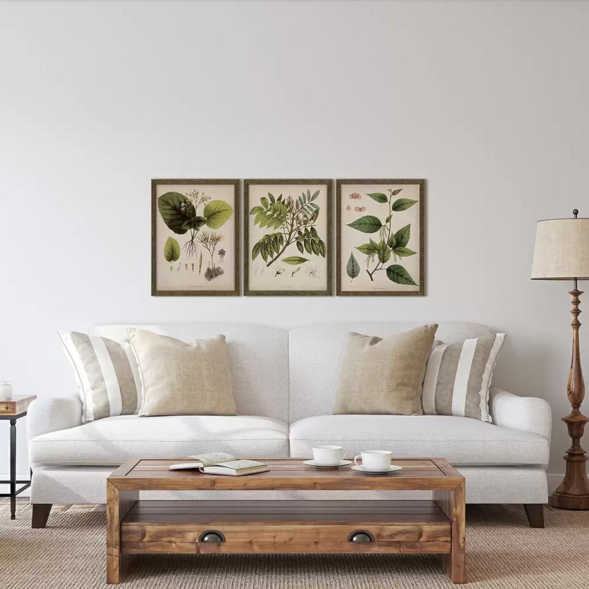 Picture of VINTAGE PLANT PRINTS I S/3